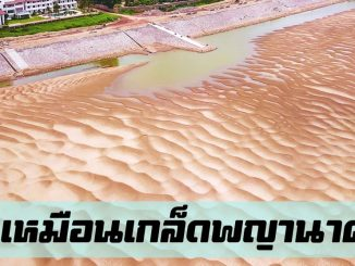 หาดทรายทองศรีโคตรบูร นครพนม